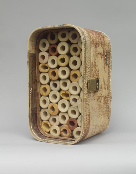 <b>honeycomb</b><br> found suitcase shell, wooden crutch handle cushions  2013, 14 x 8 x 9 inches