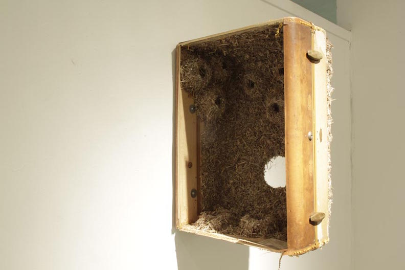 <b>evelyn's suitcase</b><br> reeds, wire mesh, wire, tape, suitcase pieces, glue 2013, 24 x 17 x 12 inches