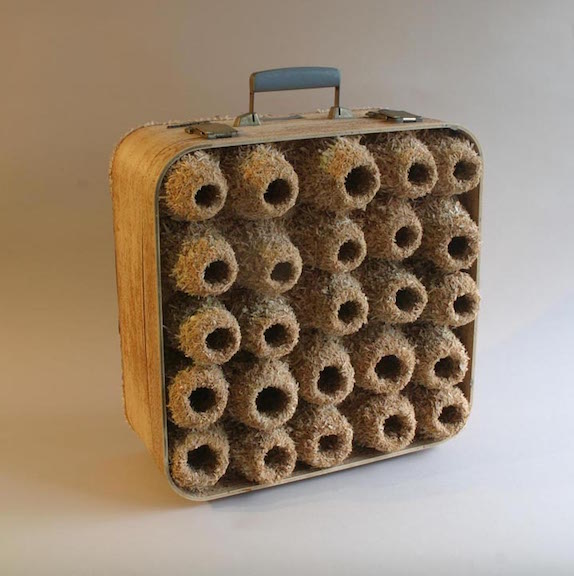 <b>suitcase colony III </b><br> found suitcase, suitcase pieces, glue 2013, 20 x 20 x 12inches